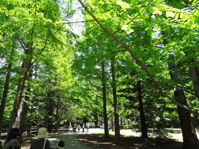 森林植物園入り口近く